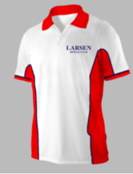 LARSEN Mens Shirt