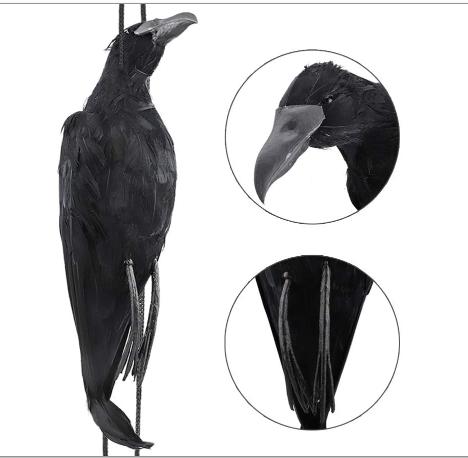 Dead Crow Green Keeper